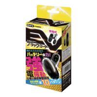 EV ブラックローター