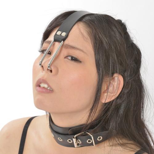 激感 首輪付鼻フック