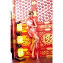 イイ女情熱真紅チャイナドレスセットの画像(6)